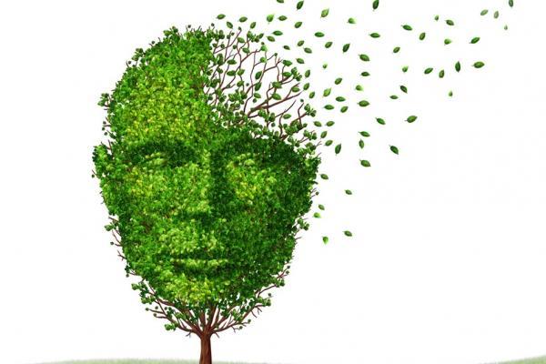 Werken rond dementie